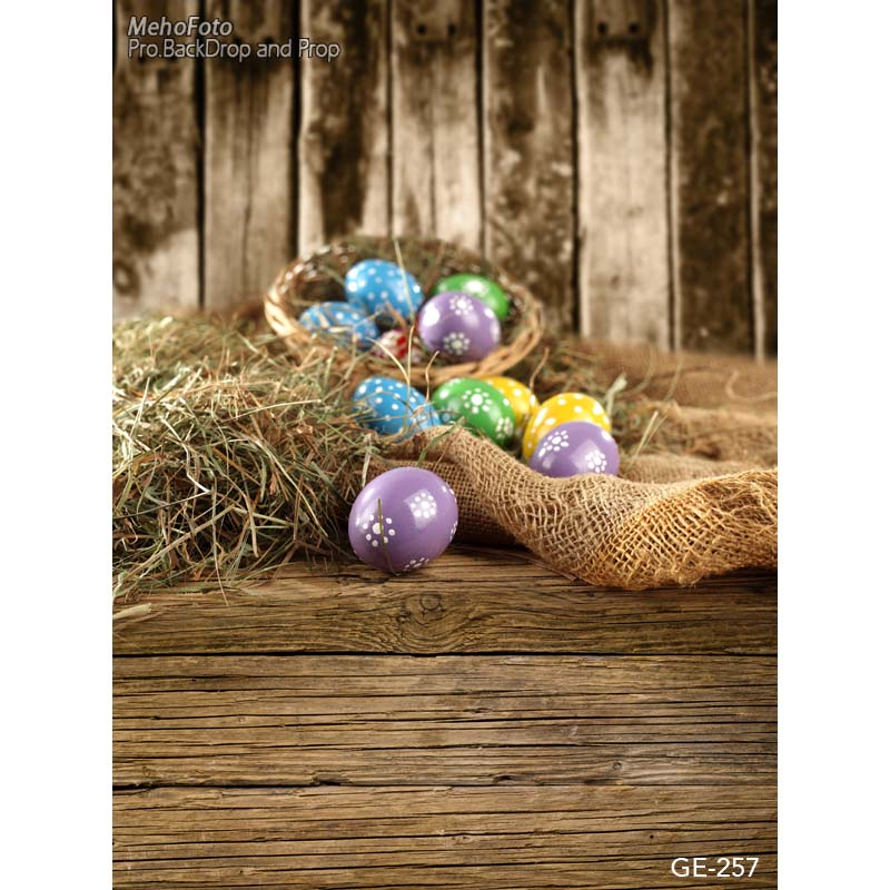 Easter day eggs in straw photography backdrops dry branches fotografia photo background for photo studio photography background easter day eggs in straw photography backdrops dry branches fotografia photo background for photo studio photography background