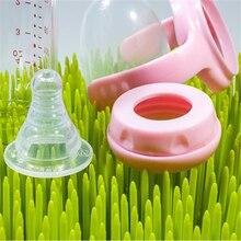 Baby Bottle Grass Drying Rack