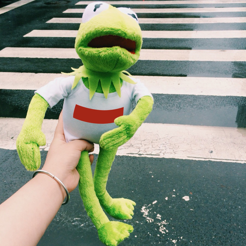 US $4 93 15% OFF|ins Frog doll kermit Sesame Street Dress dolls Comfort  plush toys American cartoon dolls Child kids birthday gift flexing-in  Stuffed