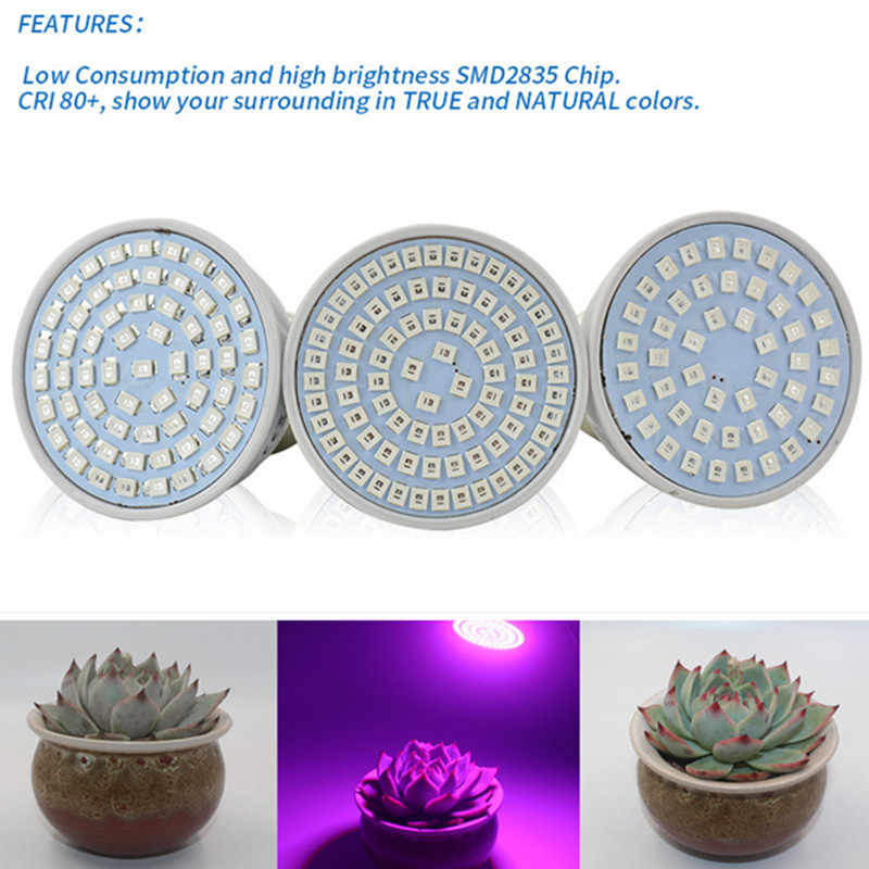 500W E27 LED Plant light Bulb E40 220V Full Spectrum Indoor Plant Growth Lamp led Vegetable Growth Greenhouse 48 60 80leds