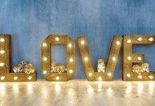 Laeacco Cães do Amor Luzes Piso De Madeira Backdrops Para Estúdio de Fotografia Fotografia Fundos Fotográficos Personalizados