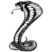15.2*22.8CM Snake Reptile Vinyl Car Stickers Motorcycle Decals Car Styling C2-0677(China)