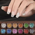 3g 12 Colors Acrylic Nail Art Glitter Powder Dust Holographic Laser Sequins Manicure Tools DIY Nail Art Tips Decoration