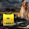 Silent dog pet dog water blower cat hair dryer animal bath blowing machine rapid drying high - power