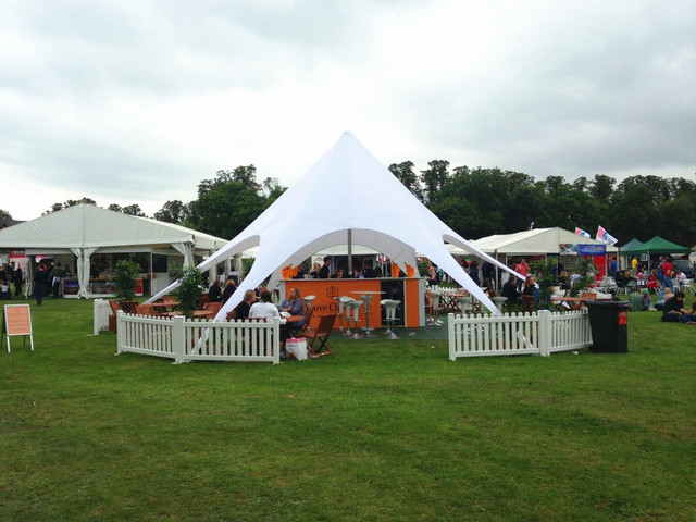 12m Diameter Star Tent for Trade Show Event PVC and Aluminum Gazebo Tent for Outdoor Display Exhibition Party Gathering Meeting
