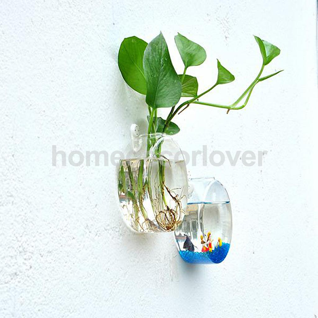 Wall hanging plant flower hydroponic flat ball glass vase wall hanging plant flower hydroponic flat ball glass vase terrarium fish tank aquarium container home garden decor in vases from home garden on reviewsmspy