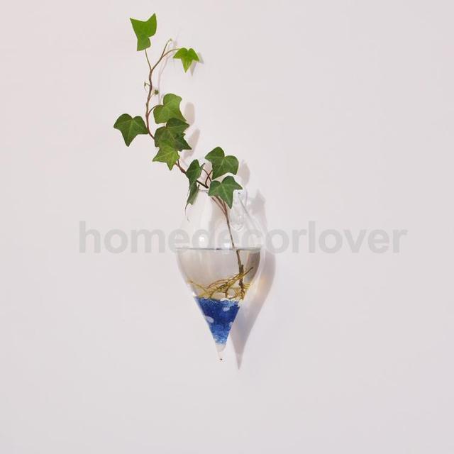 clear olive shape glass wall hanging flower vase plant bottle home