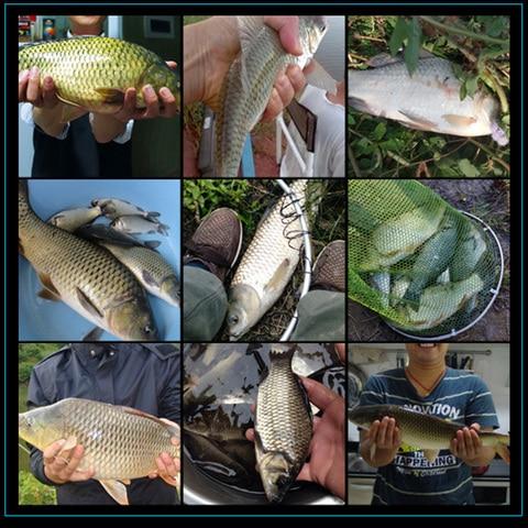 acessorios de pesca castfun inoxidavel bait 200 pcs lote