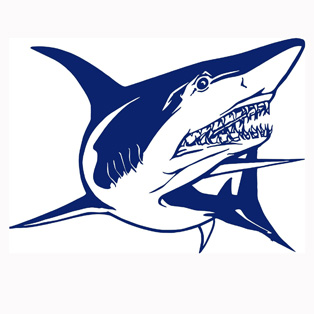Popular Fishing Decals For BoatsBuy Cheap Fishing Decals For - Blue fin boat decals