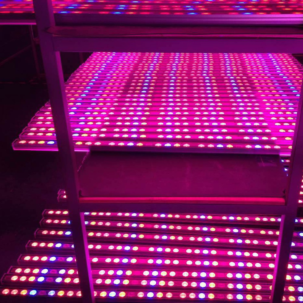 55cm 54W Waterproof led Plant grow light bar red blue UV IR indoor plant strip lamp lighting for hydroponics greenhouse grow box 90w led round grow lights light ratio 5 2 1 1 with the mixture of red blue orange white lights for indoor grow box