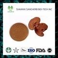100g Ganoderma lucidum Extract Powder/Reishi Mushroom Extract Polysaccharide &Triterpene 10:1