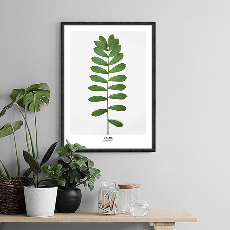 Zamia Ferns Plant Painting Modern Nordic Poster Green Home