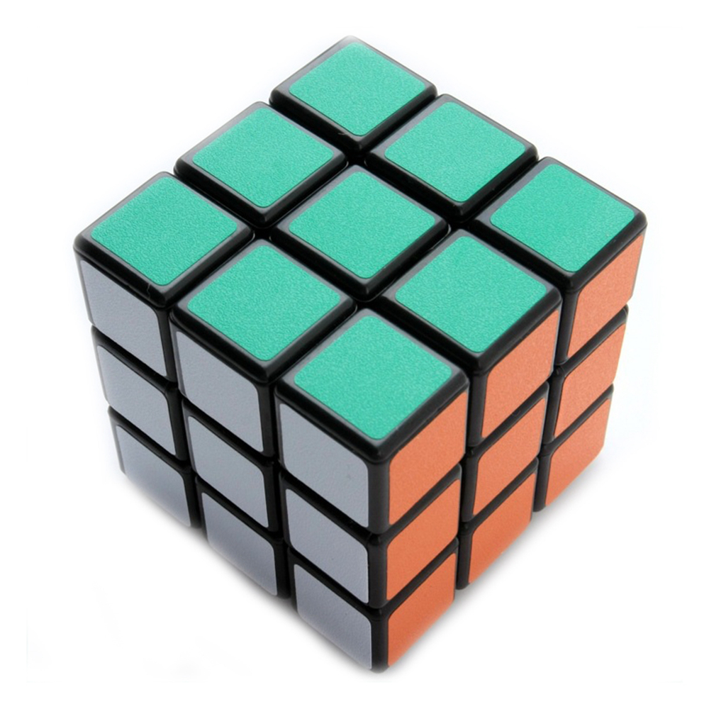 Shengshou Frosted Sticker 3x3x3 Magic Cube Speed Puzzle Cube Birthday Gift Educational Toys for Kids Children Grownups