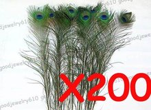 Pack of 200 pcs Natural Peacock Feather Tail 8 11 For Wedding Craft Earring Eye Width
