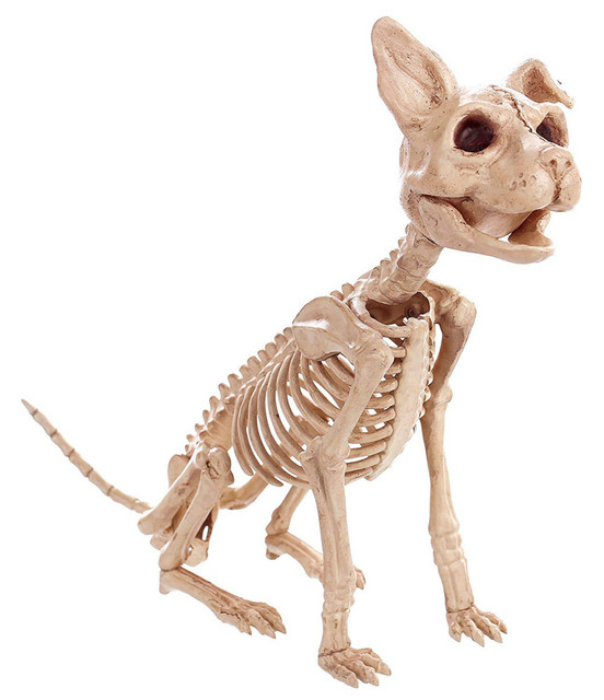 High Qualtity Skeleton Cat Kitty Skeleton Animal Bones for Horror Halloween Party Home Decor Decoration Accessories Decoration