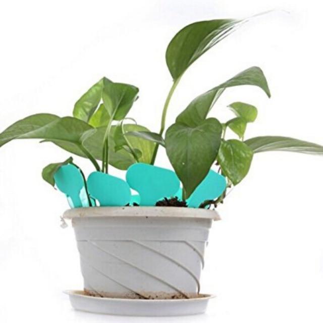 Mini T Type 100pcs Pp Nursery Garden Plant Label Good Quality Flower