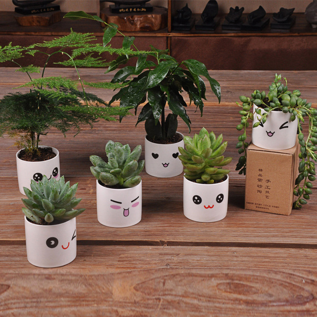 6 Styles Creative Ceramics Planter Flowerpot Cute Expression Garden Succulent Plants Desk Flower Pot Garden Decoration