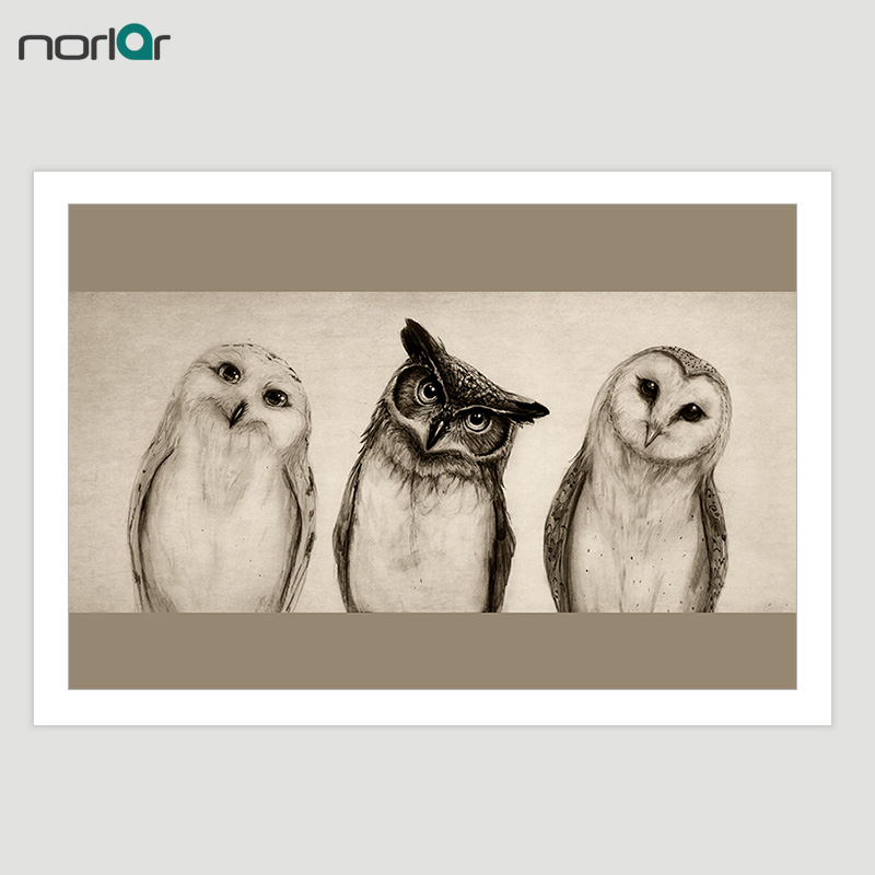 Canvas Painting HD Printed The Owl Art Print Painting Pictures on Canvas Decorative Wall ...