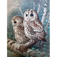 5D DIY Diamond Embroidery forest two owls Diamond Mosaic Full Square Drills Artwork Home Decoration(China)