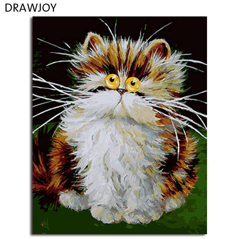 DRAWJOY Framed Picture Painting & Calligraphy Of Loely Animals Cat DIY Painting By Numbers Coloring By Numbers Home Decor