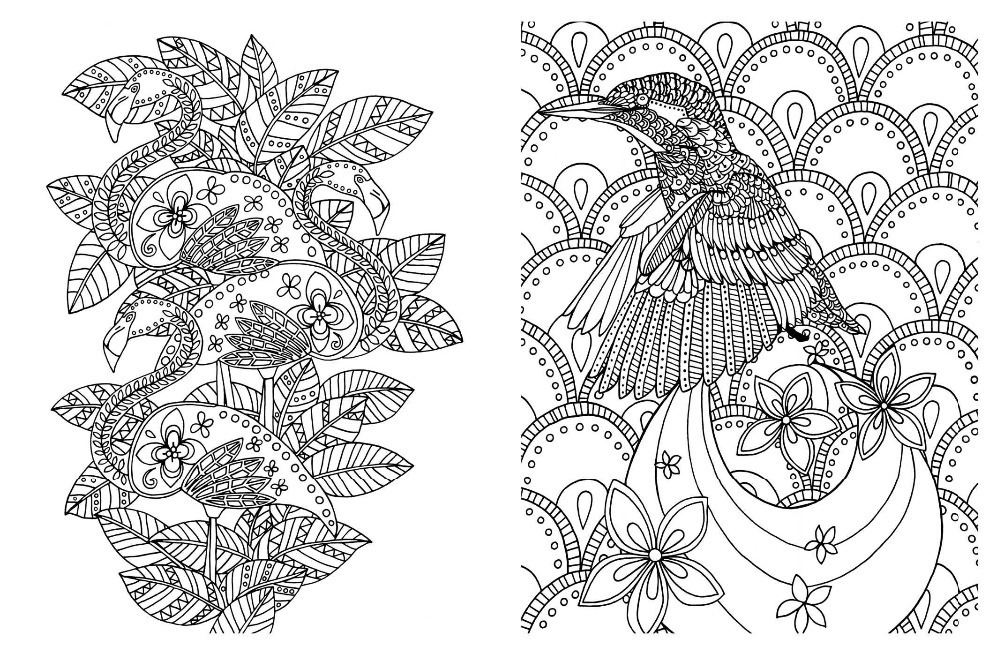 Posh Adult Coloring Book Soothing Designs For Fun And Relaxation English Antistress Books Adults Art In From Office