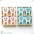 Forma do Dente de madeira Imã de geladeira Adesivo de Parede Janela Dental Clinic Presente Do Escritório Bonito 16 pcs