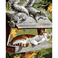 cheap modern diy digital painting on canvas animal decoration wall pictures for living room 40X50cm oil painting by numbers 8015