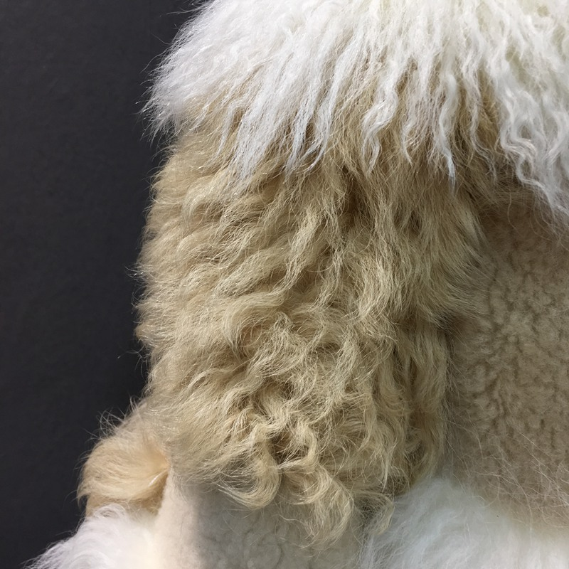 natural sheep fur coat real lamb fur (18)