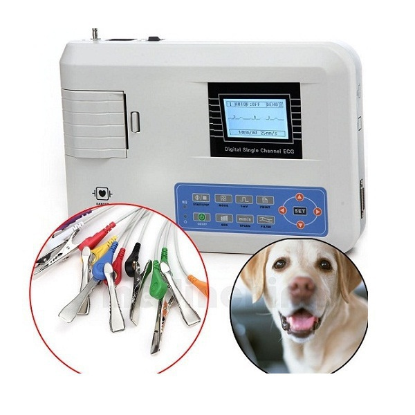 Veterinary Single Channel ECG / EKG Machine with Printer and Paper and USB Software 100G VET for animals, Free shipping купить