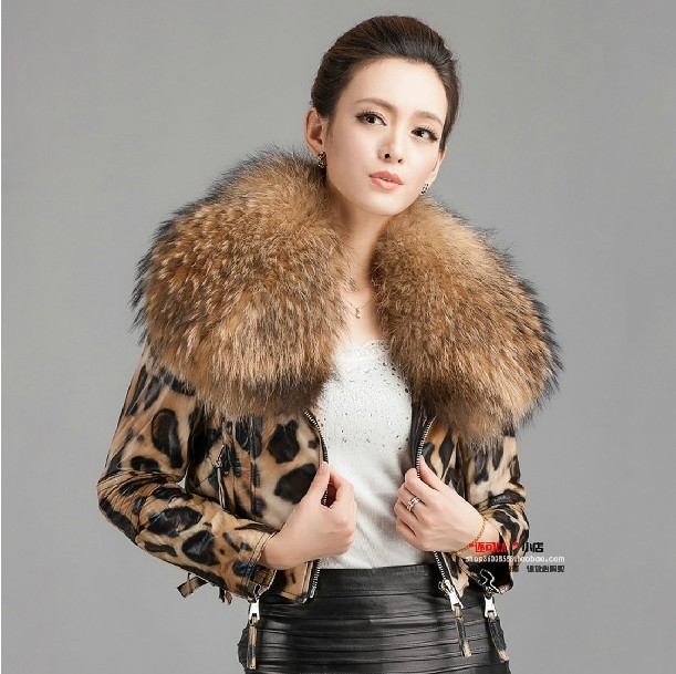 New Genuine Leather Jacket Women's Sheepskin Leather Coat With Ultra Large Raccoon Fur Collar Leopard Coat EMS Free Sipping L121