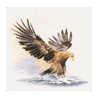 Animals The Eagle Tread The Water Modern Eagle Wings Precision Printing Cross Stitch Kits For Embroidery