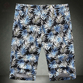 2016 Мужчины Шорты мужская Повседневная Мода Slim Fit Большой Размер Печати Шорты До Колен Шорты Пляж Шорты Мужской Верхней Одежды брюки