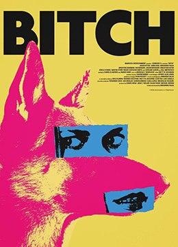 《母狗》2017年美国剧情,喜剧,动作电影在线观看