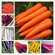 200 pcs/bag carrot plants,blue purple orange red 13 colous organic vegetable ,Natural growth for home garden planting