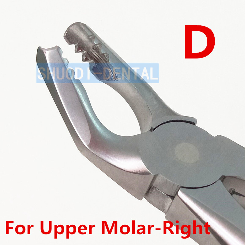1 pcs Dental Orthodontic Extraction Forceps Adult Teeth Extracting Pliers Surgical Toothdental Instrument Tool Stainless Steel