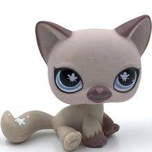 Lps gato real pet shop brinquedos siameses gato #664 roxo kitty velho brinquedo original para crianças frete grátis