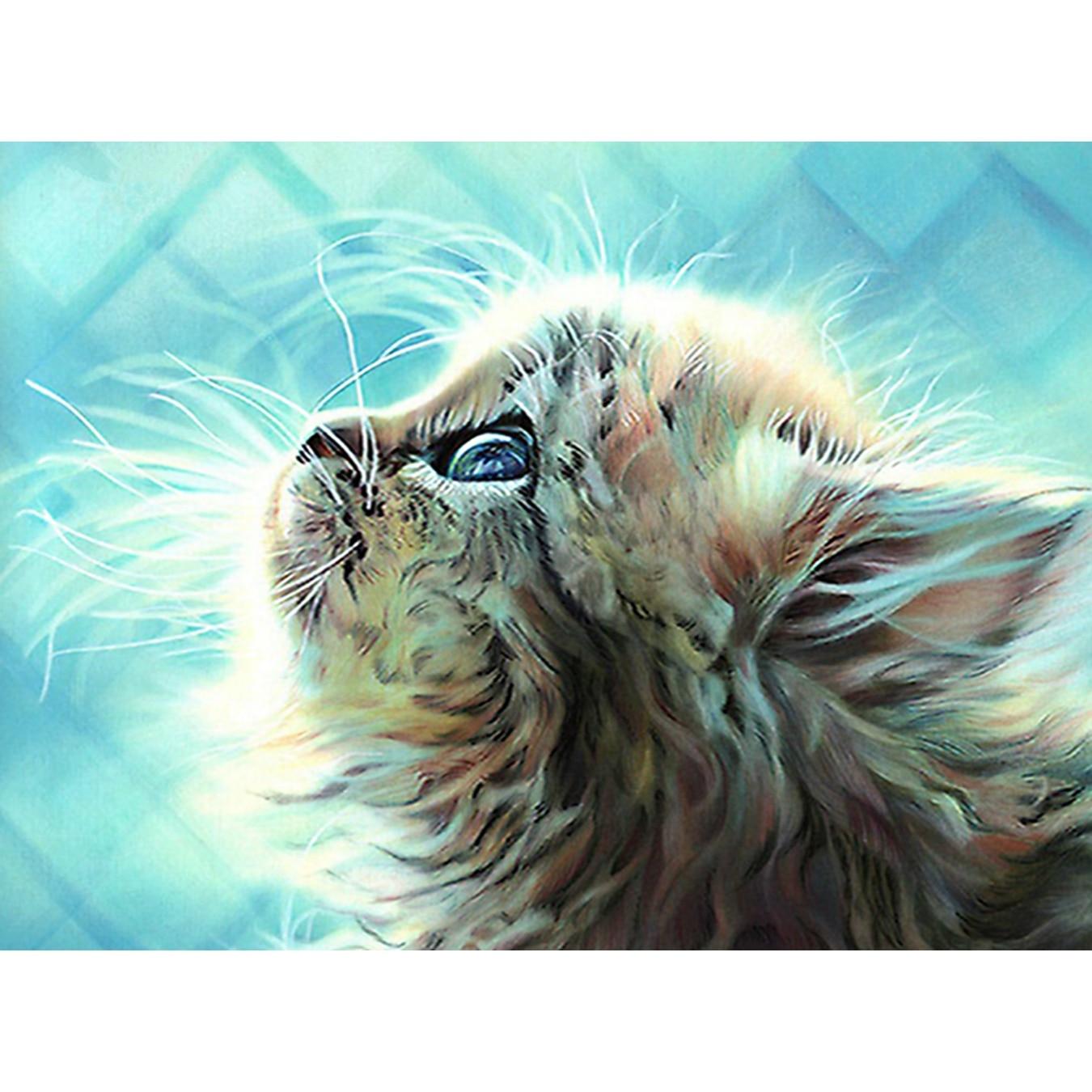 Katt, 5D, DIY, Diamantmålning, Full, Animal, Needlework, Broderi, - Konst, hantverk och sömnad