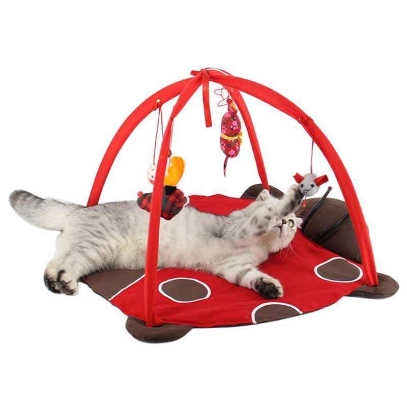 Small Cute Pet Cat Beds Mats Traing Tortorise Pet Cats Bed Toys Mobile Activity Playing Bed Toys Pad Blanket House Cat Toy