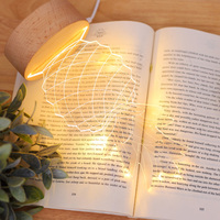 Hot Sale Pineapple Shape 3D Decoration Lamp , And Acrylic Baby Bedside Atmosphere Night Light