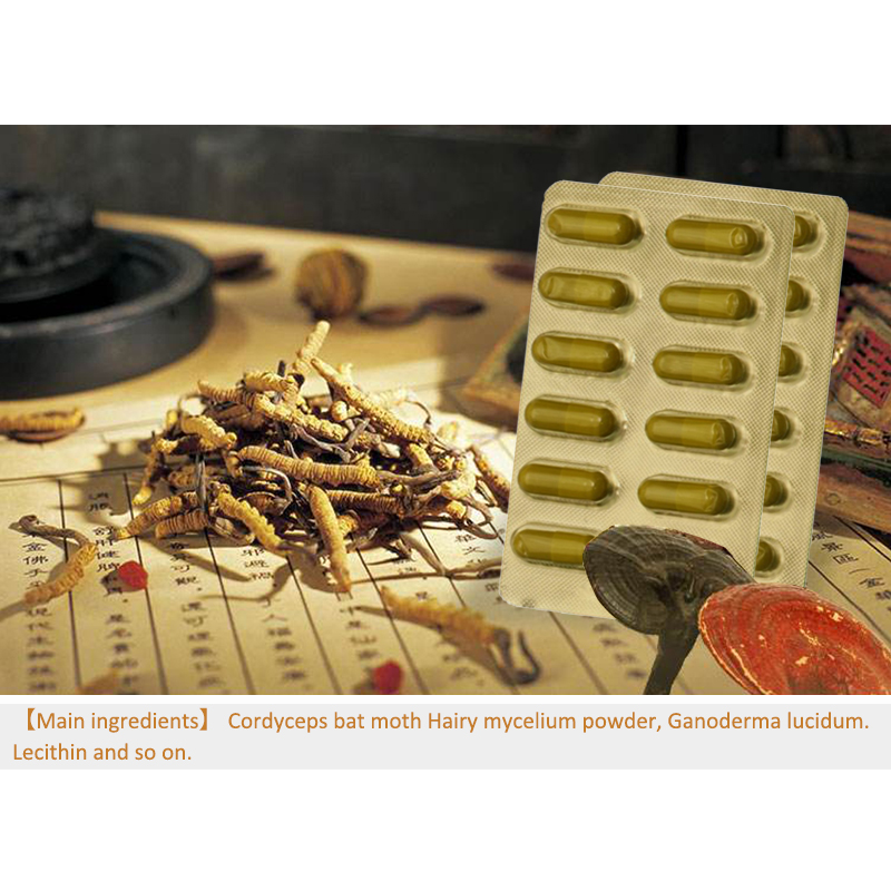 4 packs Wild Cordyceps Softgel Capsule Ganoderma Lucidum Extract Anti Fatigue Energy Enhancer Improve Intelligence Boost Brain in Massage Relaxation from Beauty Health