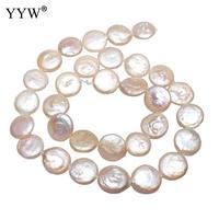 Культивированная «монетка» пресноводный жемчуг плоские круглые Натуральный Белый 12-13 мм продан за приблизительно 15 дюймов Strand Перл slice