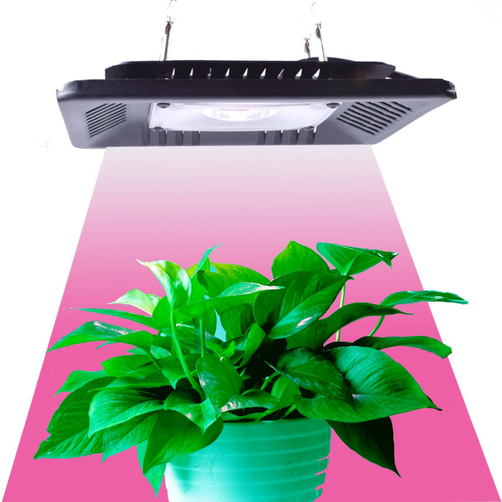 COB 50W 100W 200W 300W Led Grow Light Full Spectrum Ultra-Thin Waterproof IP67 Growing Lamp For Vegetable And Bloom Indoor Plant