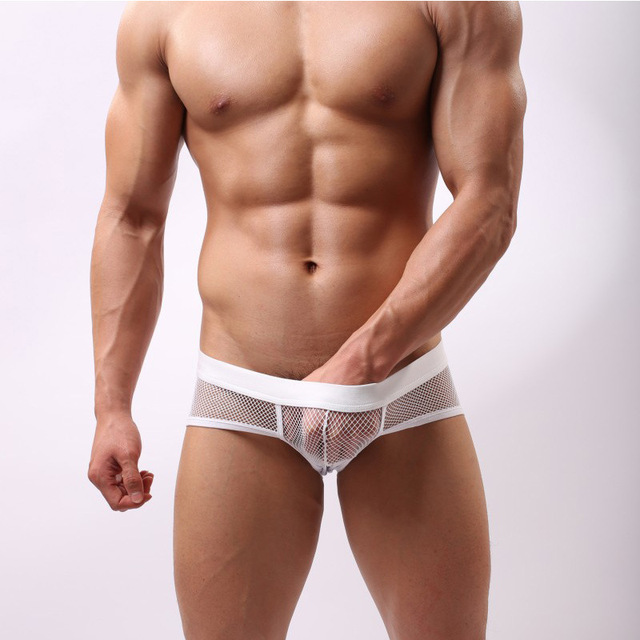 Calzoncillos Aussie Mens Underwear 2016 New Fashion Of Autumn Men Transparent Mesh Sexy Appeal Breathable Pure Color Briefs