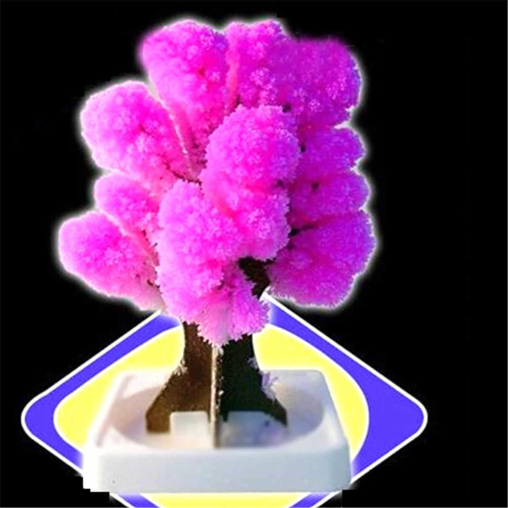 新しい成長紙木マジック日本さくらツリーのブランド日本製ピンク魔法装飾 12*8 センチメートル
