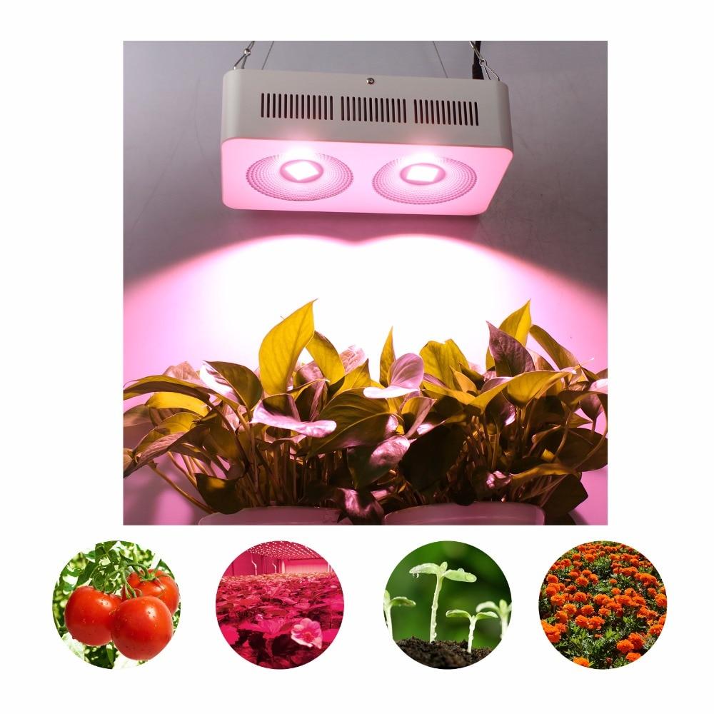 Най-новият мощен пълен спектър - Професионално осветление - Снимка 6