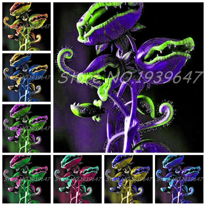 150 шт. в горшке Насекомоядные растения бонсай открытый Dionaea muscipola гигантский зажим Венера Flytrap для домашний садовый горшок Бесплатная доставка