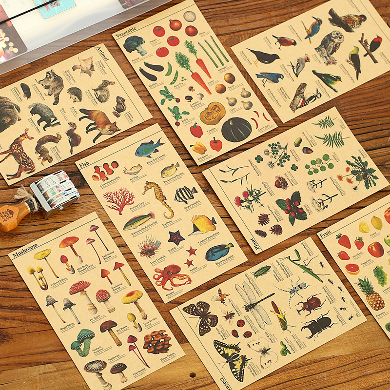 8 pcs/Lot Kraft paper sticker for Learning fruit fish vegetable plant insect animal Vintage Stationery School supplies 6132