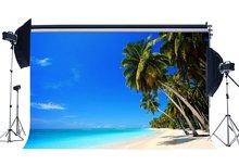 Spiaggia di Sabbia di mare Sullo Sfondo di Palma da Cocco Nube Bianco Cielo Blu Natura Romantico di Estate di Vacanza Sfondo Amante di Nozze