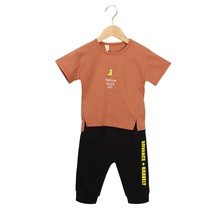 children clothes suit,2019 new style baby boy and  summer fashion cartoon Brother sport set