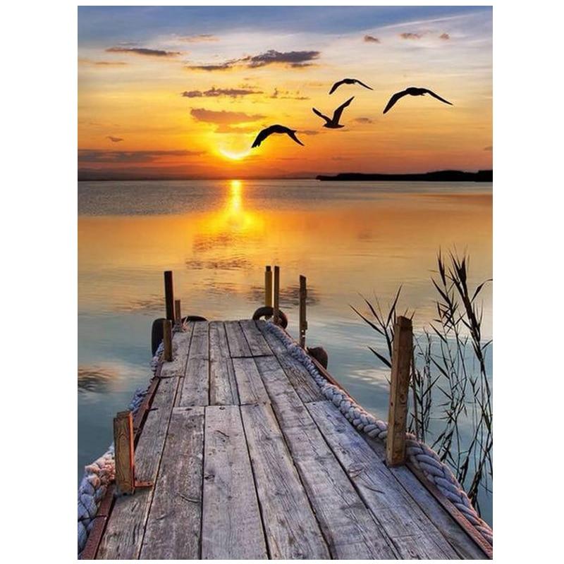 seagull sunset scenery